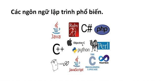 Thuật ngữ về website cơ bản từ A đến Z. Các ngôn ngữ lập trình phổ biến